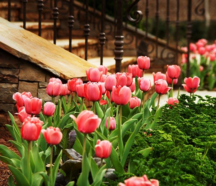 thum-resi-flower-gardens